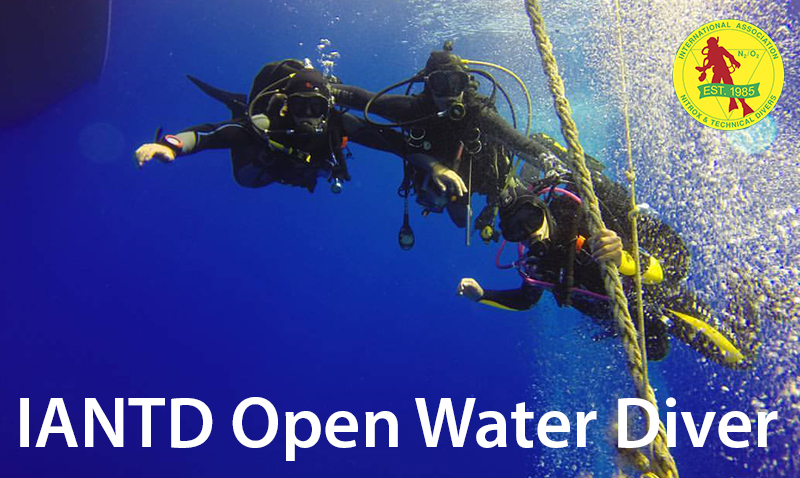 Open Water Diver IANTD
